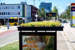 Utrechtse bushokjes met groen dak wereldhit